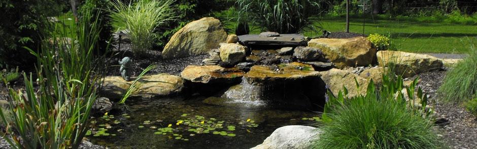 Pond Maintenance Plantique Landscaping